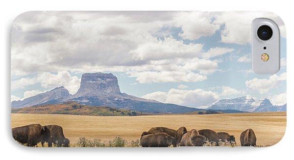 Where The Buffalo Roam IPhone Case by Alex Lapidus