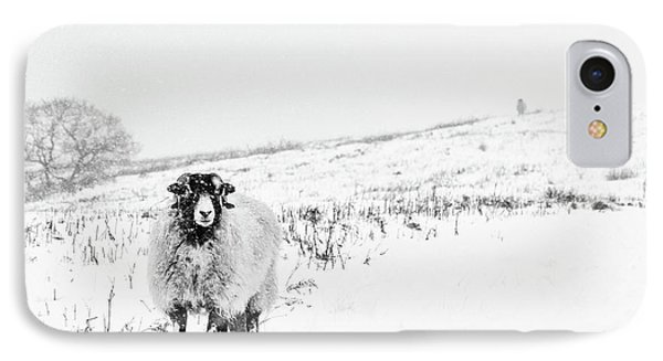 Sheep iPhone 7 Case - Which Way Is South? by Janet Burdon