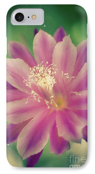 IPhone Case featuring the photograph Whisper Of Color by Ana V Ramirez