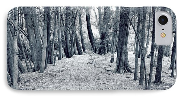IPhone Case featuring the photograph Whispering Forest by Wayne Sherriff