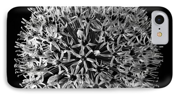 White Allium Phone Case by Sandra Foster