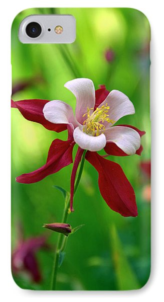 White And Red Columbine  IPhone Case
