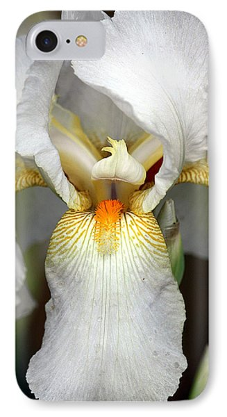IPhone Case featuring the photograph White Bearded Iris 2 by Sheila Brown