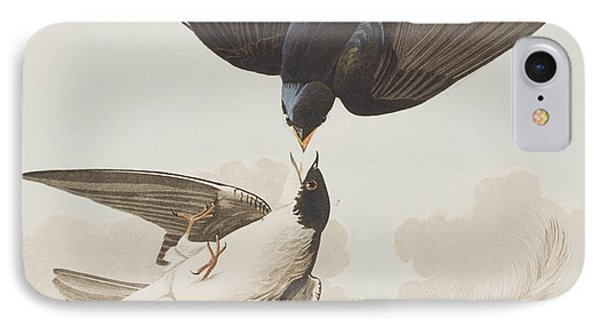 White-bellied Swallow IPhone 7 Case by John James Audubon