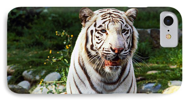 White Bengal Tiger  Phone Case by Garry Gay
