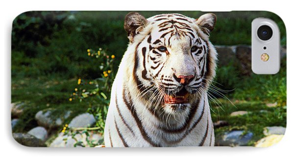 White Bengal Tiger  IPhone Case by Garry Gay
