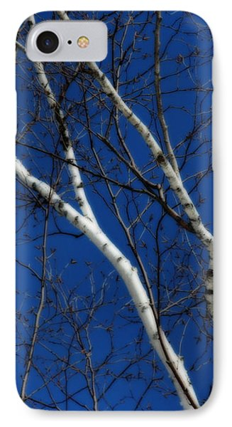 White Birch Blue Sky IPhone Case by Smilin Eyes  Treasures