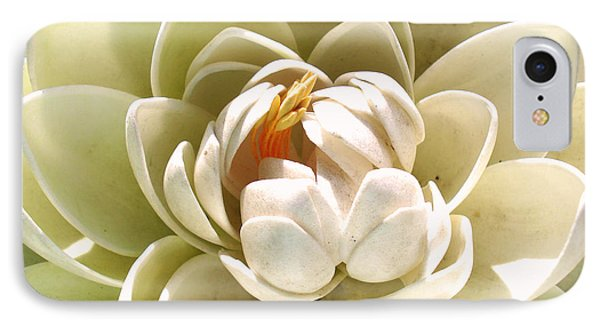 White Blooming Lotus IPhone Case by Sumit Mehndiratta