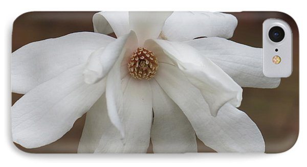 IPhone Case featuring the photograph White Blossom by Rod Ismay