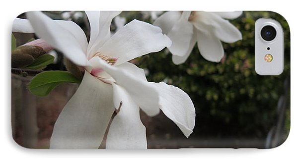 IPhone Case featuring the photograph White Blossoms by Rod Ismay