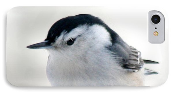 White Breasted Nuthatch IPhone Case by Diane Merkle