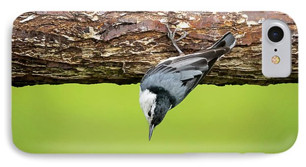 IPhone Case featuring the photograph White-breasted Nuthatches by Ricky L Jones