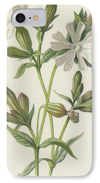 White Campion IPhone Case by Frederick Edward Hulme