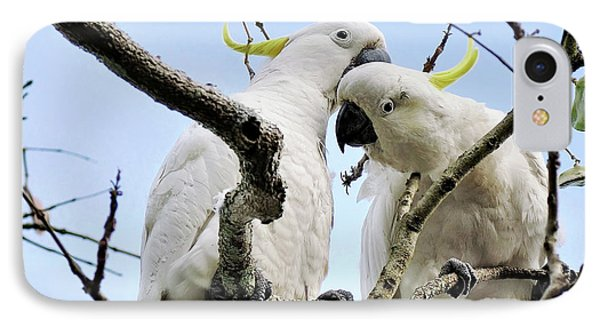 White Cockatoos IPhone 7 Case by Kaye Menner