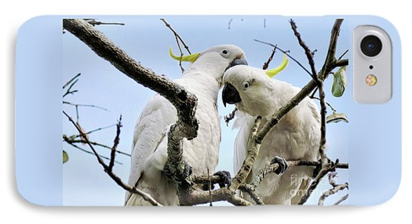 White Cockatoos IPhone Case by Kaye Menner