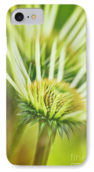 White Coneflower IPhone Case