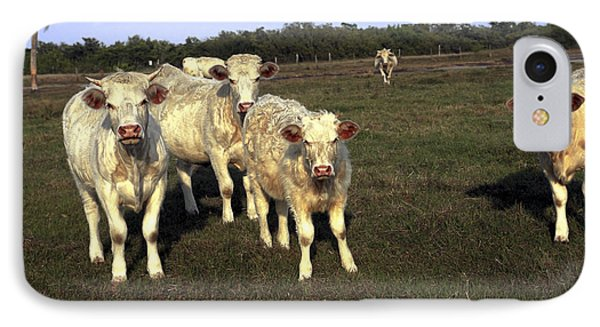 IPhone Case featuring the photograph White Cows by Sally Weigand
