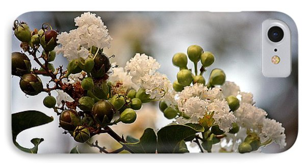 IPhone Case featuring the photograph White Crape Myrtle- Fine Art by KayeCee Spain