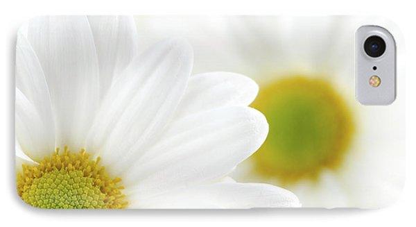 White Daisies IPhone Case by Elena Elisseeva