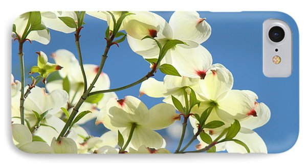 White Dogwood Flowers 1 Blue Sky Landscape Artwork Dogwood Tree Art Prints Canvas Framed Phone Case by Baslee Troutman