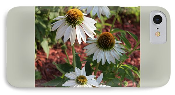 IPhone Case featuring the photograph White Echinacea In Pastel by Suzanne Gaff
