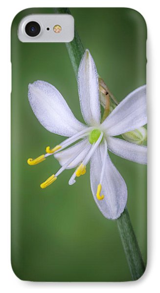IPhone Case featuring the photograph White Flower by Lynn Geoffroy