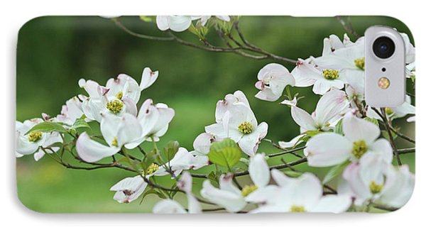 IPhone Case featuring the photograph White Flowering Dogwood by Ann Murphy
