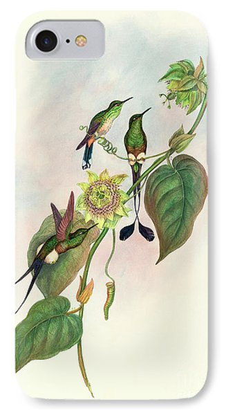White Footed Racket Tail IPhone Case by John Gould