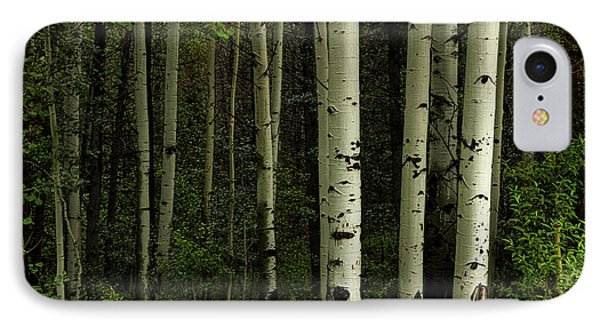 IPhone Case featuring the photograph White Forest by James BO Insogna