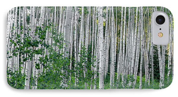 IPhone Case featuring the photograph White Forest by Tim Reaves