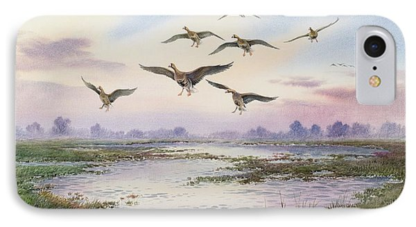 White-fronted Geese Alighting IPhone Case by Carl Donner