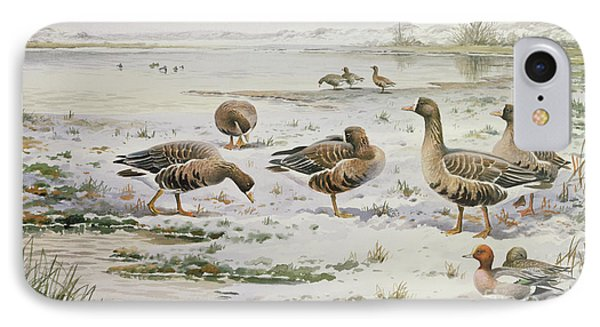 White Fronted Geese IPhone Case by Carl Donner