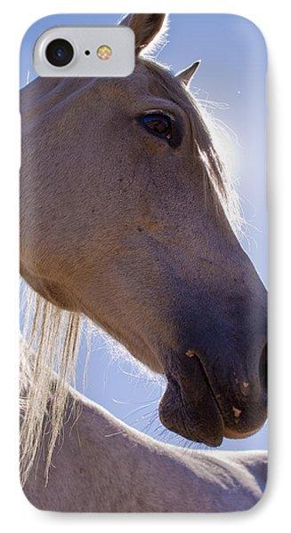 White Horse Phone Case by Dustin K Ryan
