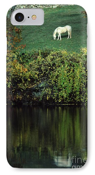 White Horse Reflected In Autumn Pond IPhone Case