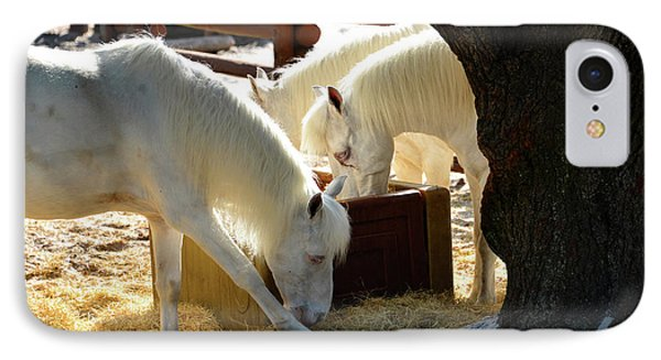IPhone Case featuring the photograph White Horses Feeding by David Lee Thompson