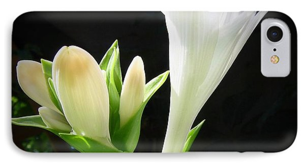 IPhone Case featuring the photograph White Hostas Blooming 7 by Maciek Froncisz
