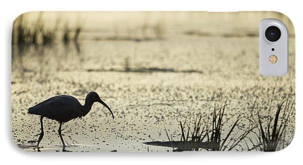 White Ibis Morning Hunt IPhone Case by Dustin K Ryan