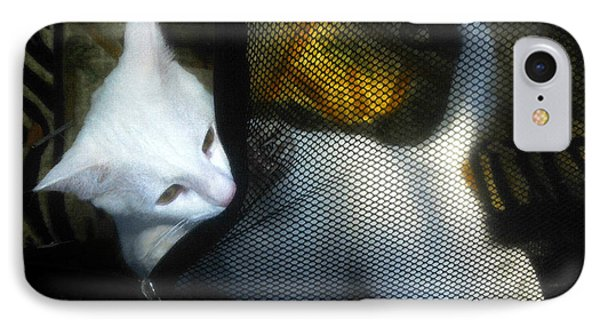 White Kitten Phone Case by David Lee Thompson