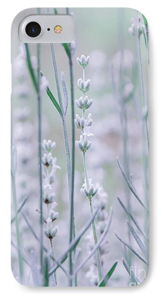 IPhone Case featuring the photograph White Lavender  by Andrea Anderegg