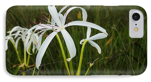 White Lilies In Bloom IPhone Case by Christopher L Thomley