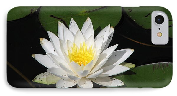 White Lily Pad IPhone Case