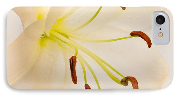 White Lily Square Version IPhone Case by Bill Swindaman