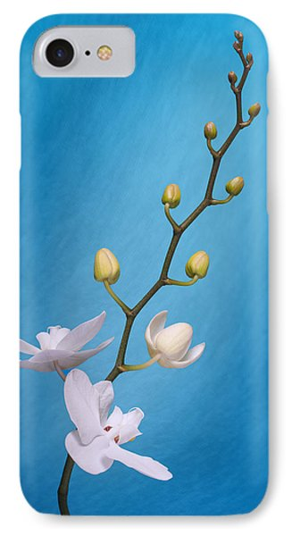 White Orchid Buds On Blue IPhone Case