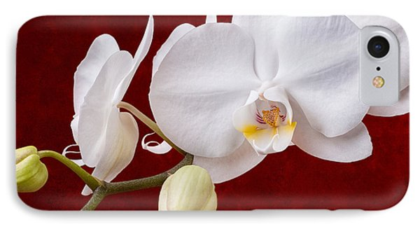 White Orchid Closeup IPhone Case