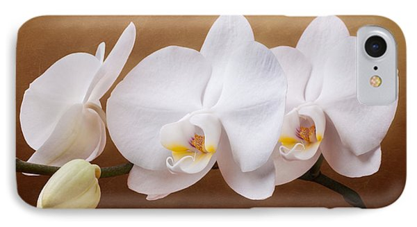 White Orchid Flowers And Bud IPhone Case by Tom Mc Nemar