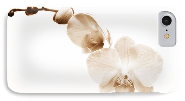 White Orchid IPhone Case by Mindy Sommers