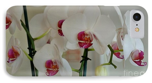 White Orchid Mothers Day IPhone Case by Marsha Heiken