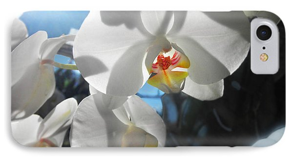 IPhone Case featuring the photograph White Orchids by David Klaboe