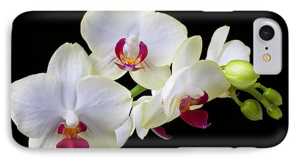 White Orchids IPhone Case by Garry Gay