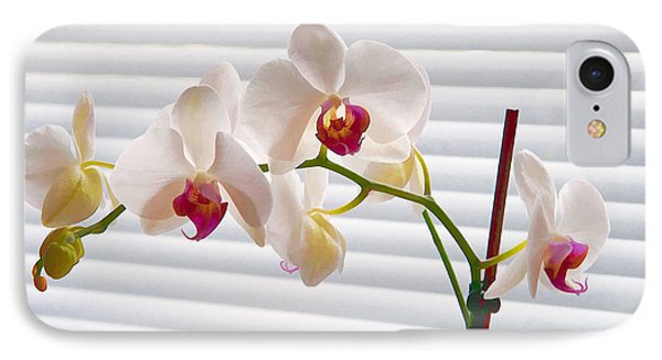 White Orchids On White IPhone Case